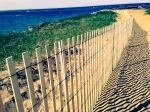 plum island - low res (105 of 17)